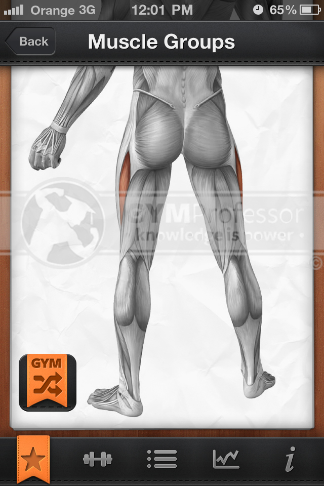 Exercise Diagrams - Inner & Outer Thighs