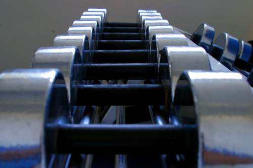 Chrome dumbbells with black-oxide handles