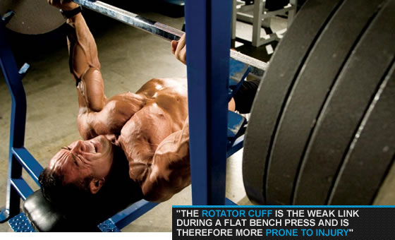 The Flat Bench Press